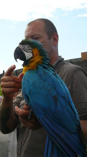 Soigneur du parc des oiseaux