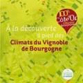 Bourgogne Rando Vignes