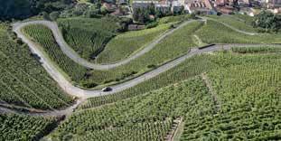 Vallée du Rhône, Condrieu – Côte-Rôtie