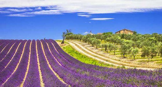 Mas de la Crémaillère 4* Provence-Alpes Côte-d'Azur - Gréoux-les-Bains