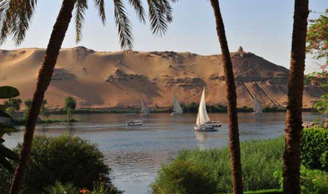Coisière sur le Nil en Egypte