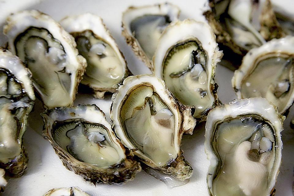 Les huîtres de Marennes Oléron