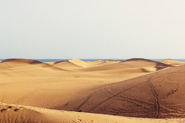 Dunes de sable de la plage de maspalomas à gran canaria