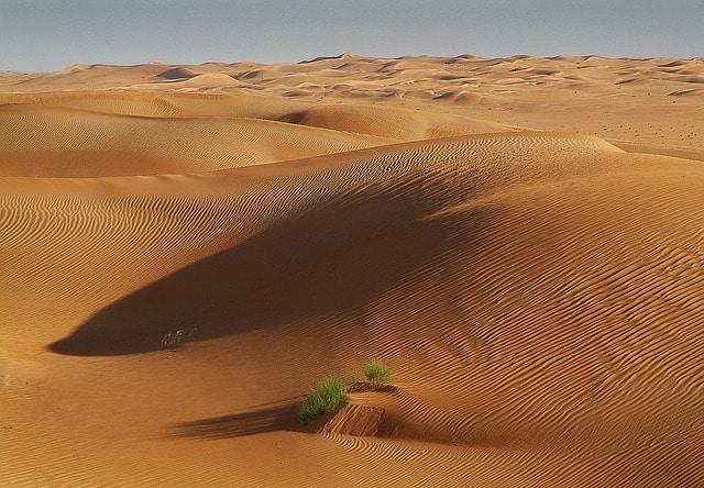 Dunes dans le désert du Sahara en Tunisie