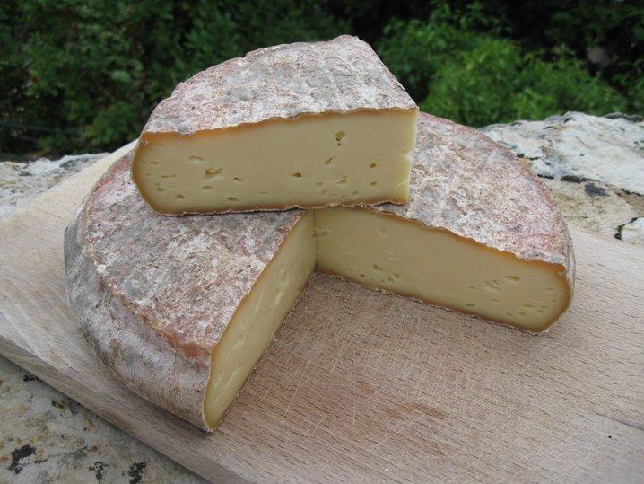 Fromage auvergnat : le Saint nectaire AOP