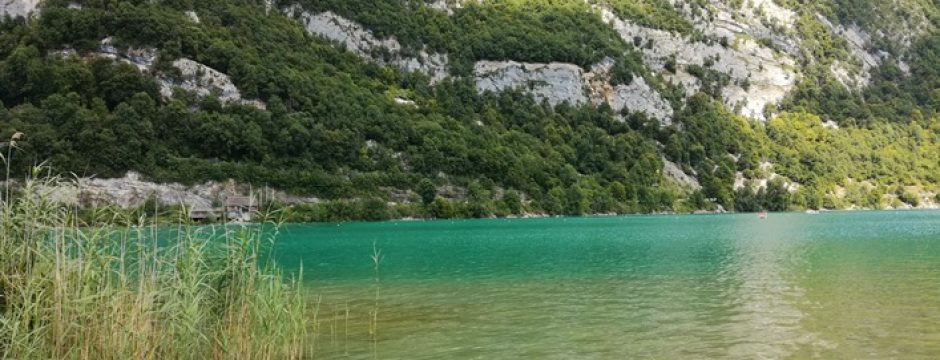 Plage du lac d'Aiguebelette