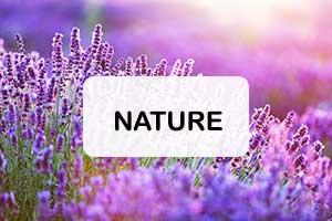 Envie de nature
