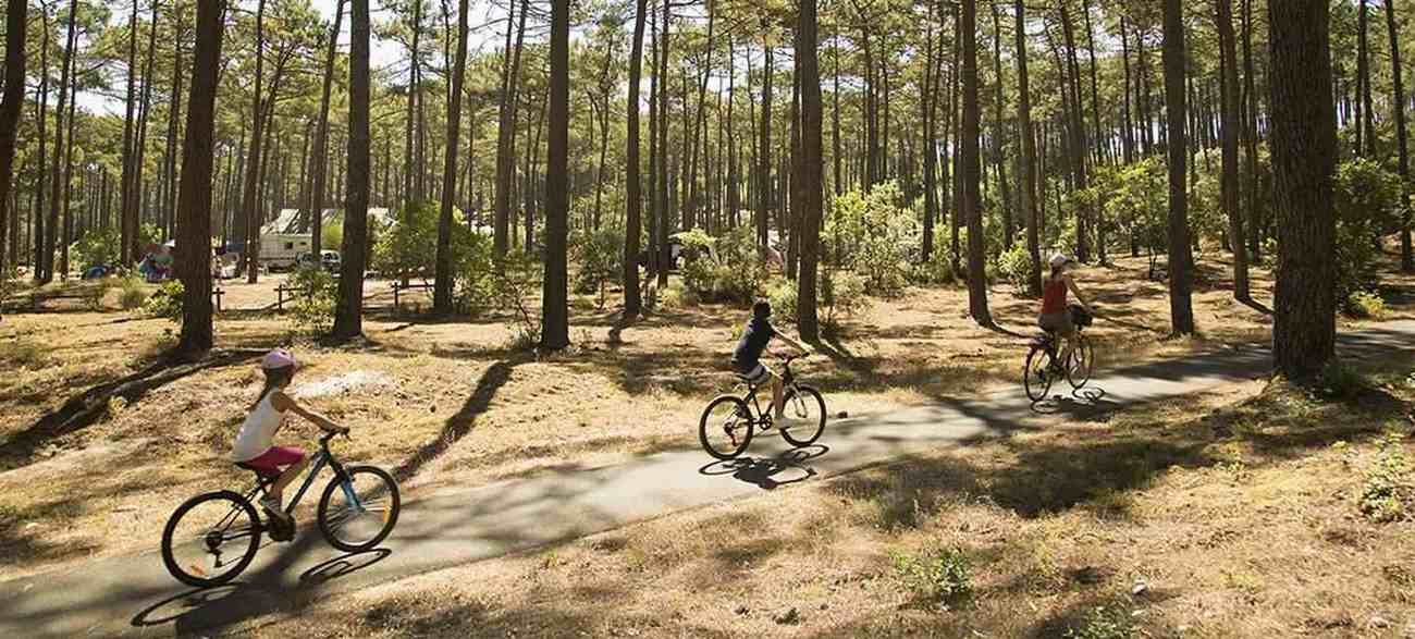 Location de vélo au Camping Indigo Landes Sud Saint-Michel Escalus