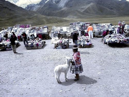 Petite fille avec un lama au Pérou