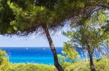 Croisière Côte d'Azur bord de mer