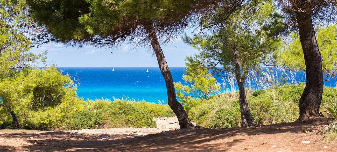 Bord de mer Côte d'Azur