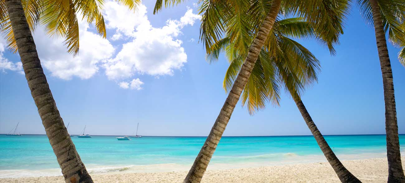 Plage sable blanc Iles Grenadines