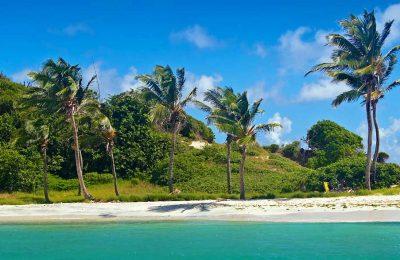 Plage Tobago Iles Grenadines