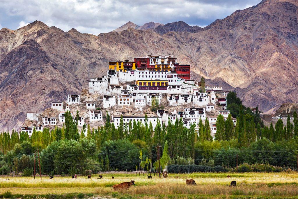 Thiksey Gompa Ladakh en inde