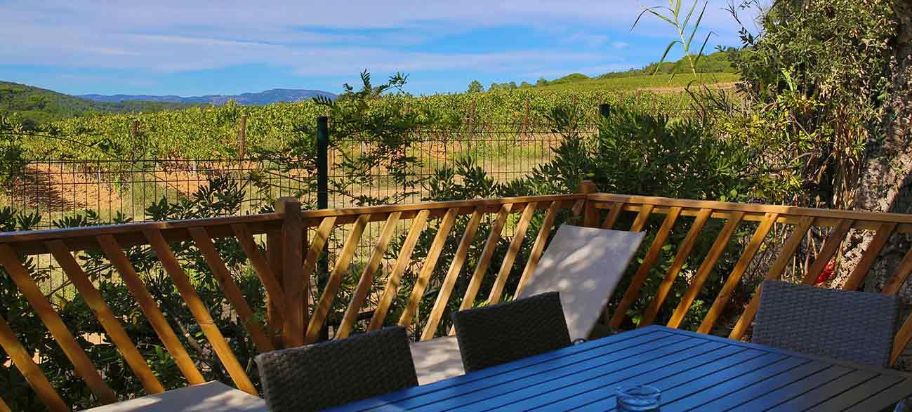 Vue vigne Camping à Ramatuelle à proximité du golfe de St Tropez dans le Var