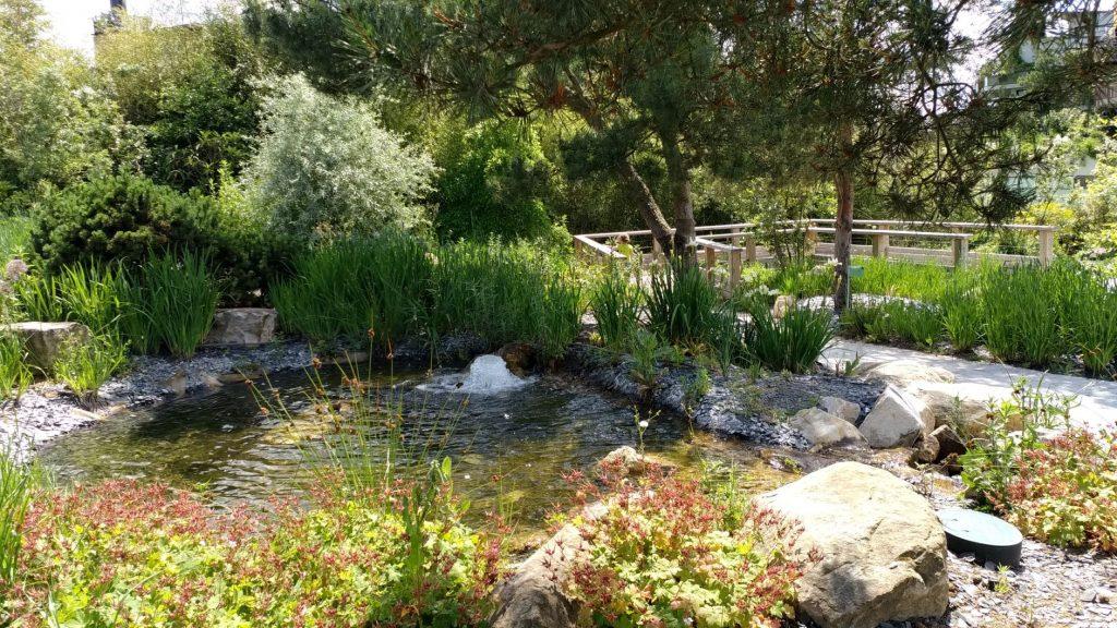 Jardin de l'eau