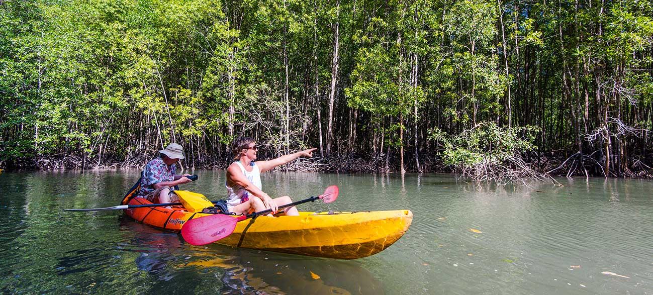Exploration de la mangrove en kayak de mer en Thaïlande