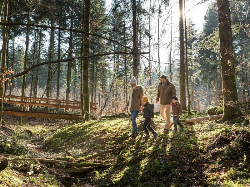 Balade dans le Domaine Center Parcs Les trois Forêts