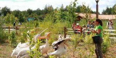 Nourrissage animaux ferme center parc